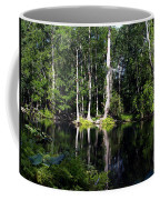 Reflections On The Ocklawaha River  Coffee Mug