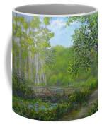 Reinsteinwoods Park Coffee Mug