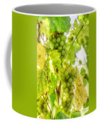 Riesling Harvest IIi Coffee Mug