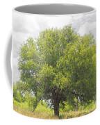 Remember The Trees Coffee Mug
