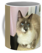 Blue-eyed Boy Coffee Mug