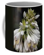 Renaissance Lily Coffee Mug
