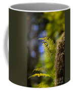 Renewal Ferns Coffee Mug by Mike Reid
