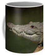 Reptile Coffee Mug