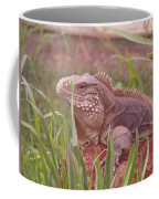 Reptile Land  Coffee Mug