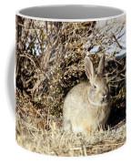 Resting Cottontail Coffee Mug