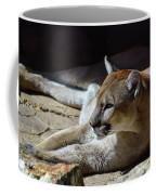 Resting Cougar Coffee Mug