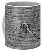 Resting Dragonfly -bw Coffee Mug
