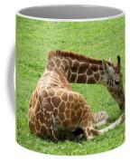 Resting Giraffe Coffee Mug