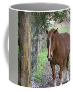 Resting In The Shade Coffee Mug