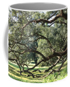 Resting Live Oaks Coffee Mug