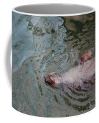 Resting Seal Coffee Mug