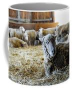 Resting Sheep Coffee Mug