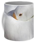Resting White Goose  Coffee Mug