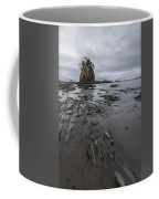 Results From The Ocean Coffee Mug