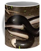 Reticulate Worm Snake Coffee Mug