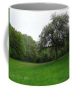 Rhineland-palatinate Summer Meadow Coffee Mug