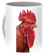 Rhode Island Red Rooster Isolated On White Coffee Mug