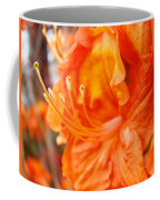 Rhodies Art Prints Orange Rhododendron Flowers Baslee Troutman Coffee Mug
