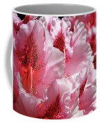 Rhodies Pink Fine Art Photography Rhododendrons Baslee Troutman Coffee Mug