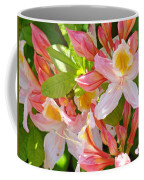 Rhodies Pink Orange Yellow Summer Rhododendron Floral Baslee Troutman Coffee Mug