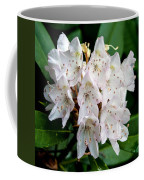 Rhododendron Family Of Flowers Coffee Mug