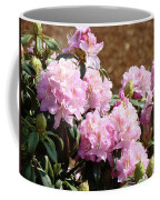 Rhododendron Flower Garden Art Prints Canvas Pink Rhodies Baslee Troutman Coffee Mug