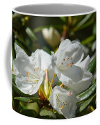 Rhododendron I Coffee Mug