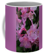 Rhododendron In The Pink Coffee Mug