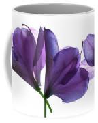 Rhody Ballet-purple Coffee Mug