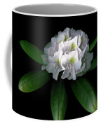Rhody Queen - White Coffee Mug