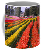 Ribbons Of Color Coffee Mug