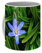 Ribbons Of Spring Coffee Mug