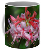 Rich Pink Blossoms Coffee Mug