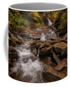 Ricketts Glen 2 Coffee Mug