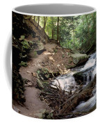 Ricketts Glen Falls 030 Coffee Mug