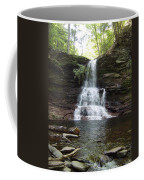 Ricketts Glen Waterfall Coffee Mug
