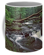Ricketts Glenn Falls 007 Coffee Mug