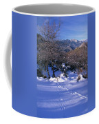 Rincon Trail - Sequoia Coffee Mug