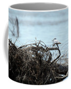 Ring Billed Gull Coffee Mug