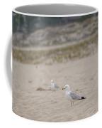 Ring - Billed Gull Coffee Mug