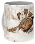 Ring-necked Pheasant Hunting In The Snow Coffee Mug