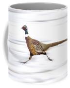 Ring Necked Pheasant Coffee Mug