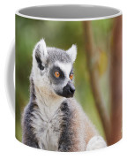 Ring-tailed Lemur Closeup Coffee Mug by Nick Biemans