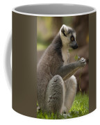 Ring-tailed Lemur Holding A Clump Of Grass Coffee Mug