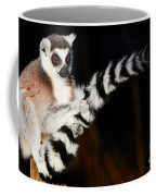 Ring-tailed Lemur  Coffee Mug by Nick Biemans