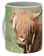 Ringo - Highland Cow Coffee Mug