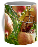 Ripe Pomegranates Coffee Mug