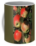 Ripening Apples Coffee Mug