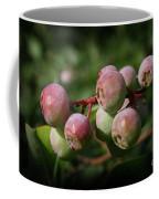 Ripening Coffee Mug